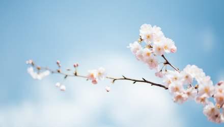16 квітня – яке сьогодні свято та що не можна робити в цей день
