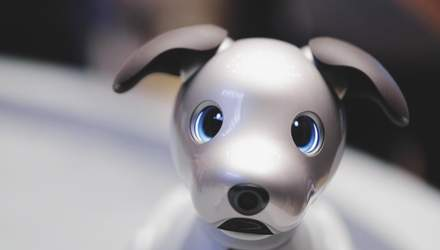 Boston Dynamics запропонувала цікаве використання робопсів