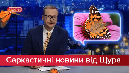 Саркастические новости от Щура: Спорт который похож на президентство Зеленского. Нашествие бабоч