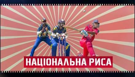 Крикет, новус, сумо: чим особливі національні види спорту різних країн