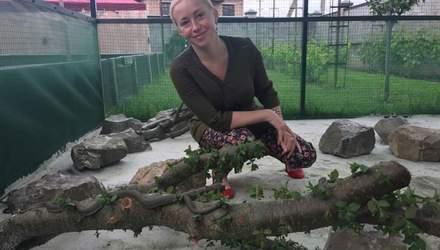 Під Львовом запрацювала перша в Україні зміїна ферма: як їх вирощують та скільки це коштує