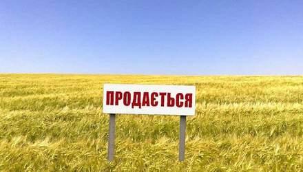 Продажа земли: каких изменений ждать украинцам