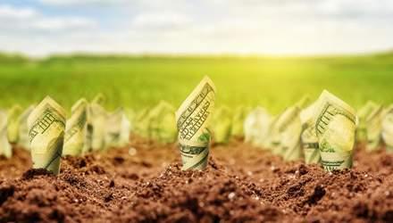 Рынок земли в Украине: смогут ли украинцы свободно распоряжаться черноземом
