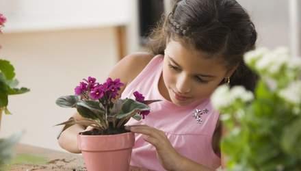Які вазонки повинні бути в дитячій кімнаті