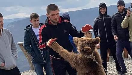 Зоозахисники вимагають покарати Хабіба Нурмагомедова за бій з ведмедем: відео