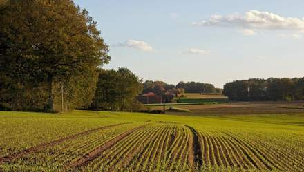 Гончарук рассказал, когда в Украине откроют рынок земли