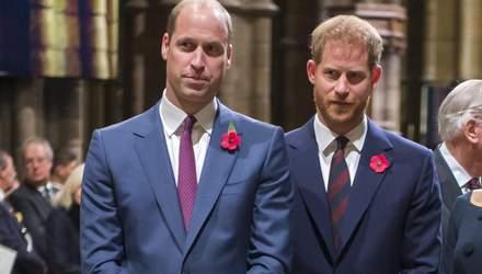 Зараз у нас різні шляхи, – принц Гаррі вперше прокоментував стосунки з братом Вільямом