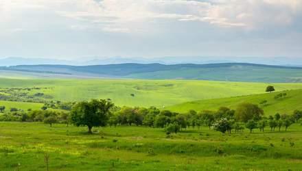 В Украине выведут из госсобственности земли за пределами НП и ликвидируют Госгеокадастр