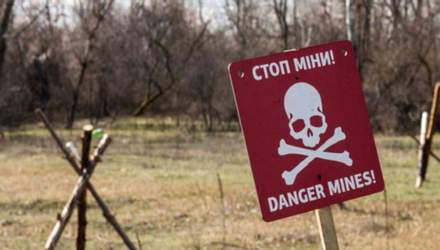 Кто помогает Украине очистить земли Донбасса и когда там будет безопасно
