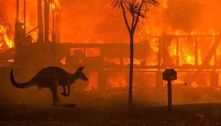 Австралія у вогні: знаменитості відреагували на нищівну трагедію