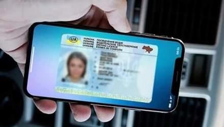 Реєструватися на авіарейс і потяг можна буде за електронним посвідченням водія: деталі