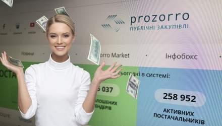 Как заработать в ProZorro: функции, которые помогут получить миллионы