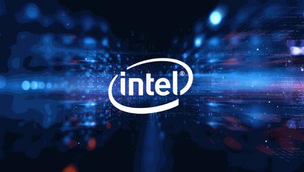 Intel работает над многопроцессорной видеокартой