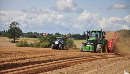 Ограничение продажи земли в одни руки: каковы последствия для фермеров и агрохолдингов