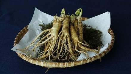 Какие виды трав являются токсичными для печени