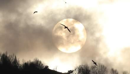 Повний Місяць у березні 2020: дата