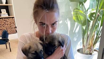 Кара Делевинь и Эшли Бенсон временно взяли двух щенков из приюта во время карантина