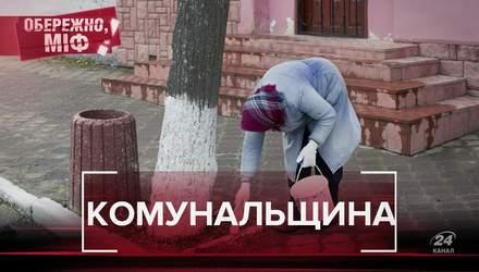 Нужно ли белить деревья и сжигать листья: самые распространенные мифы среди украинцев