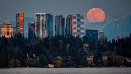 Розовая Луна 2020: яркие фото и видео этого необычного явления