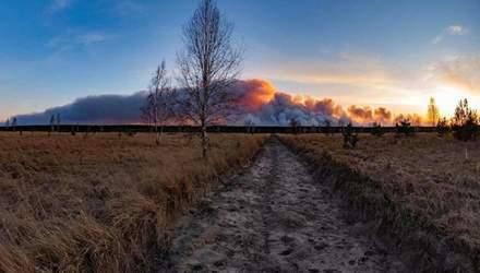 Песчаные бури и пожары: в чем причина и какие последствия для экологии