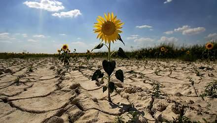 Ураганы, засуха и резкое изменение температур в Украине: неутешительный прогноз климатологов