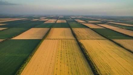 Государственных земель в Украине значительно меньше, чем заявлено официально