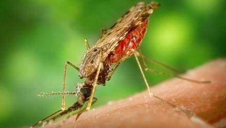 В Украине зафиксировали случай малярии