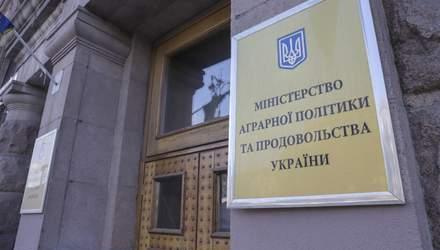 """""""Новое-старое"""" министерство может снова появиться в Украине"""