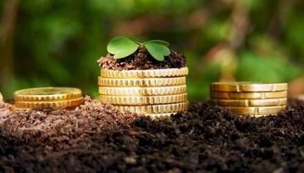 """Рынок инвестиций в сельское хозяйство Украины """"обвалился"""""""