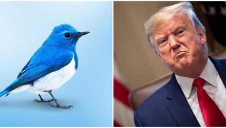 Угнетают свободу слова: обида Трампа на Twitter переросла в указ против соцсетей