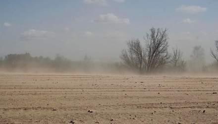 Пилові бурі та затоплення: що загрожує українським аграріям