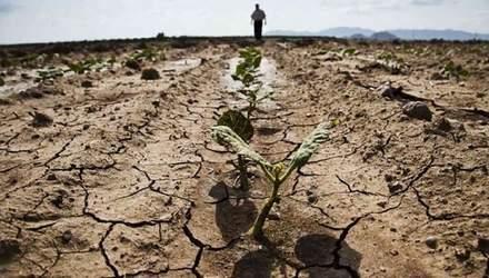 Посухи в Україні ймовірні вже влітку та восени: в РНБО кажуть про значну небезпеку