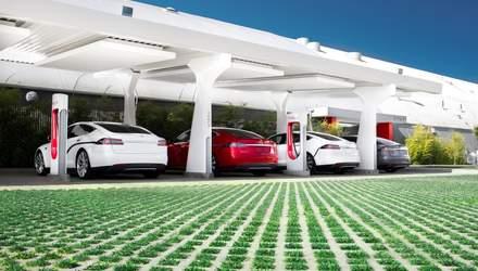 Почему выгодно инвестировать в активы производителей электромобилей: аргументы аналитика