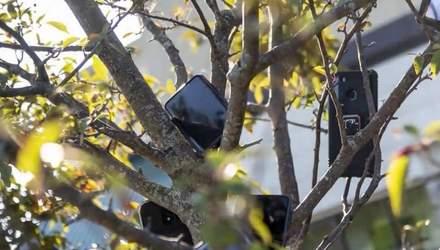 Курьеры развесили смартфоны на деревьях возле складов Amazon: цель