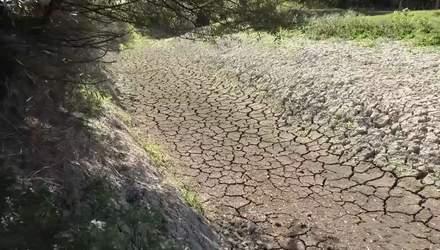 Крим страждає від засухи: чи може Україна відновити постачання води