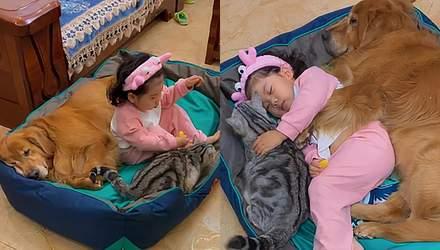 Игры и сладкий сон: трогательные фото и видео дружбы девочки с домашними любимцами