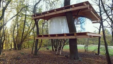 Прозрачный домик на дереве: в Чехии появилась необычная постройка – фото