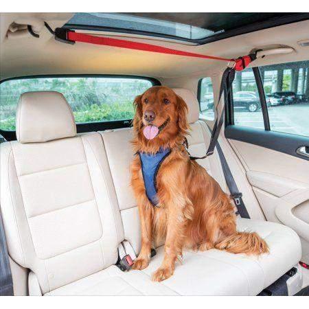 Зіп лайн для собак в авто