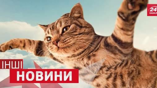 ІНШІ новини. Кіт вразив танцями на пілоні. Що можна помістити в крихітній квартирі