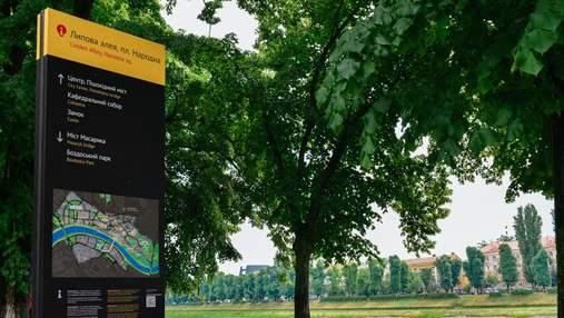В Ужгороді зацвіла найдовша липова алея: неймовірні фото