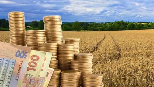 Скільки в рік зароблятиме українець на землі після зняття мораторію: цікаві дані