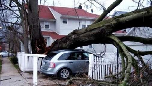 """Кількість загиблих від урагану """"Майкл"""" у США збільшилася"""