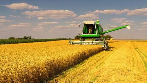 """Беглец-аферист Гута договорился с чиновниками и планирует вернуть агрохолдинг """"Мрия"""", – Лещенко"""
