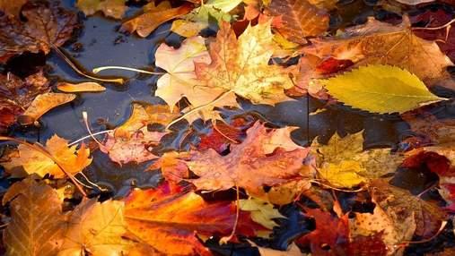 Прогноз погоди на 17 листопада: сонячно, холодно, а негода відступає на схід