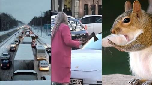 Найсмішніші меми тижня: фестиваль літньої ґуми, сокирою по Porsche і потішний світ тварин