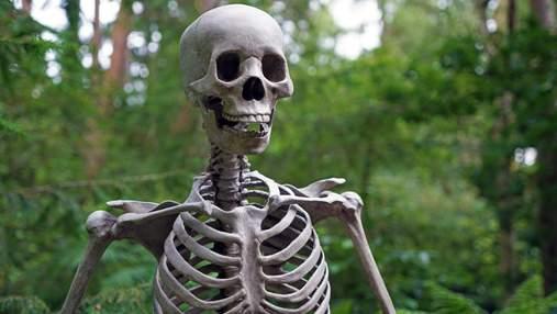 Дивуються, що не помітили раніше: вчені зробили неочікуване відкриття в анатомії людини