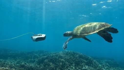 Для фанатів морських глибин: команда Navatics створила унікальний підводний дрон