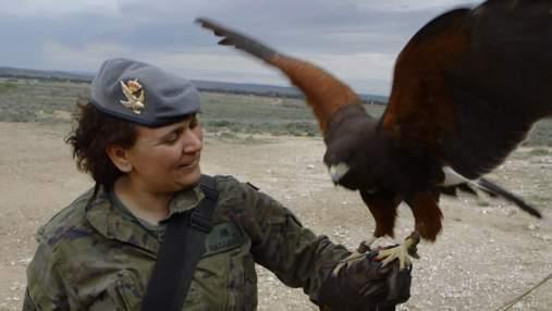 Чем занимаются работники НАТО в свободное время: необычные хобби