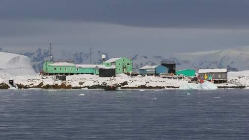 Как Крещение с купанием отметили в Антарктиде: фото