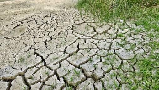 Аграрії ще не можуть отримати компенсації за загиблий урожай